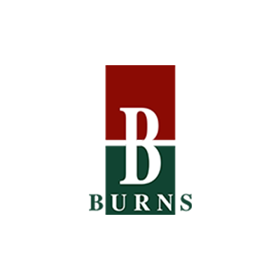 Burns Brief Inventory of Communication and Cognition (Burns Inventory)